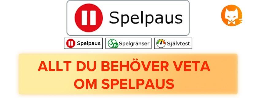 All info och regler om Spelpaus Sverige