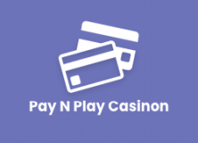 Pay N Play Casinon logga